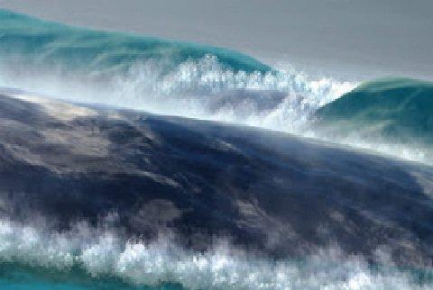 یافتن شواهد وقوع توفان عظیم در خلیج فارس و احتمال انتساب آن به توفان نوح